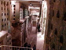 חורים בקירות במערות בית גוברין (צילום: איל שפירא)