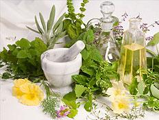 צמחי מרפא מונחים לצד בקבוקים (צילום: Robert Pears, Istock)