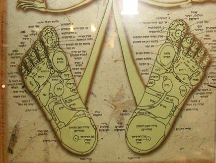 ציור של הרגליים וניתוח קווי הרגל (צילום: עודד קרני)
