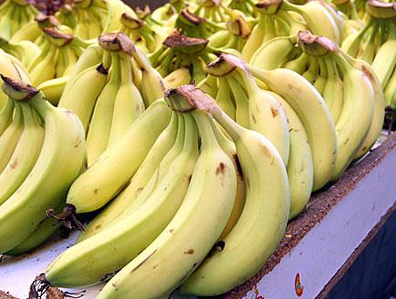 בננות בשוק (צילום: עודד קרני)