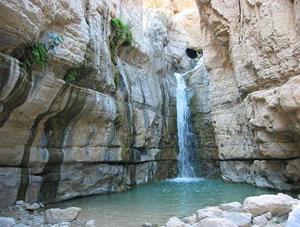 טיול בנחל ערוגות שמורת עין גדי (צילום: אסתר ענבר )