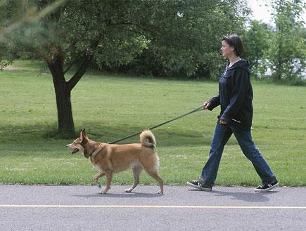 אישה מטיילת עם כלב האסקי ברחוב (צילום: אור גץ, jupiter images)