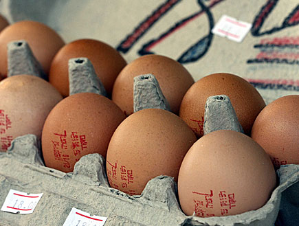 חבילה של תריסר ביצים (צילום: עודד קרני)