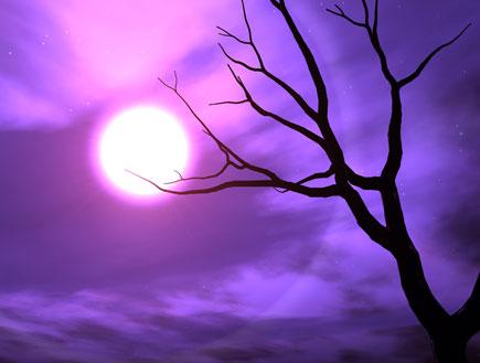 ירח (צילום: אור גץ, SXC1)