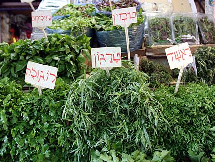 עשבים / תבלינים בשוק - טימין, בזיליקום, ראשד, טרגו (צילום: עודד קרני)