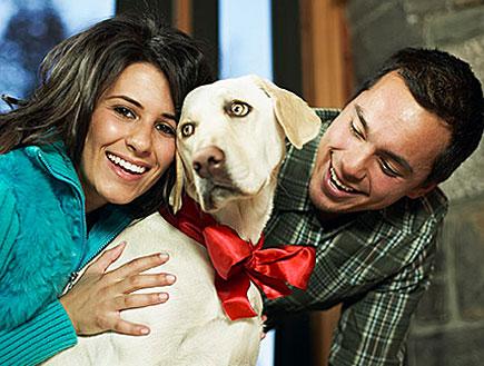 גבר במשבצות ואישה בטורקיז מחייכים וביניהם כלב בסרט (צילום: jupiter images)