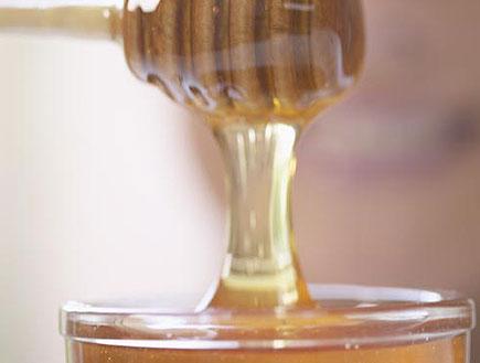 דבש- קלואז אפ כלי עם דבש (צילום: אור גץ)