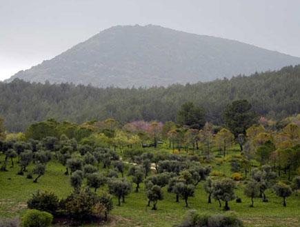 טיולים בצפון: הר מירון והעמק שלמרגלותיו (צילום: Beivushtang)