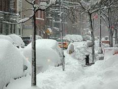 חורף בניו יורק 1 (צילום: צ'לסי)