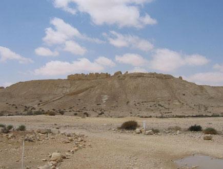 עתיקות בתל ניצנה בשבטה