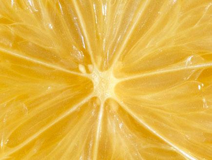 תמונת תקריב של לימון (צילום: אור גץ, jupiter images)