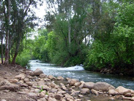 נחל שניר (צילום: wikipedia)