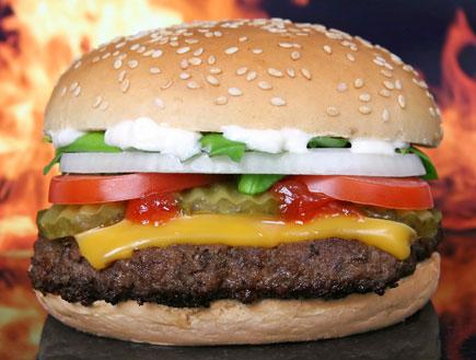 אוכל ומזלות-צ'יזבורגר (צילום: אור גץ, SXC1)
