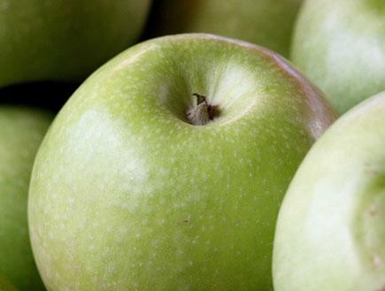 תפוחי גרני סמית' 3 (צילום: עודד קרני)