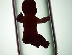 תינוק במבחנה