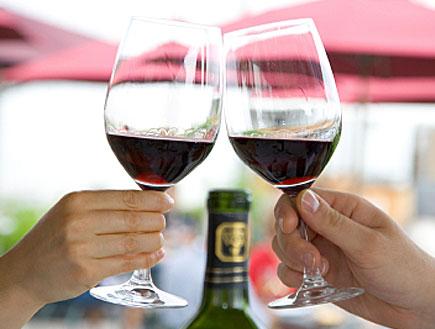 שתי ידיים מחזיקות כוסות יין ועושות לחיים (תמונת AVI: אור גץ, חדשות)