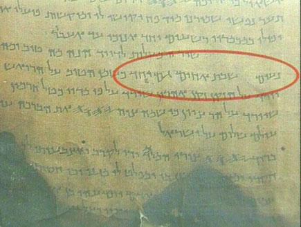 מגילה ממוזיאון, חלק בה מוקף בעיגול אדום (תמונת AVI: עדי רם, חדשות)