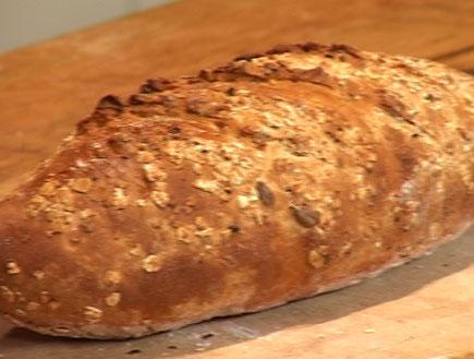 לחם דגנים- תאוריית הבצק (וידאו WMV: עדי רם)