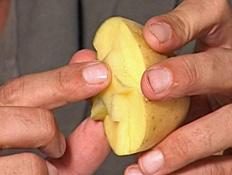סדנאות יצירה- תפוחי אדמה
