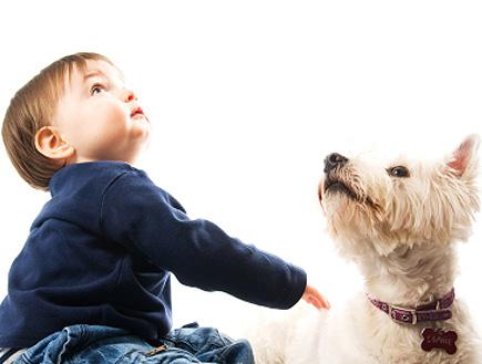 ילד מתלטף כלב (צילום: RichHobson, Istock)