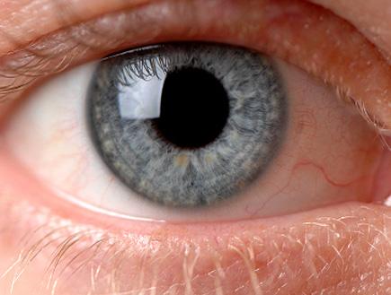 עין כחולה שצולמה מקרוב (צילום: istockphoto)