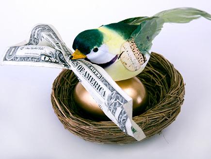 הציפור, ביצת הזהב והדולר שהיא מחזיקה בפיה (צילום: gotbaby, Istock)