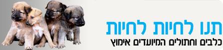 ערוץ החיות-תנו לחיות לחיות header_tnulachyot