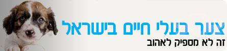 ערוץ החיות-צער בעלי חיים בישראל header_zaar-animals