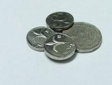 מטבעות בשקלים (צילום: stock_xchng)