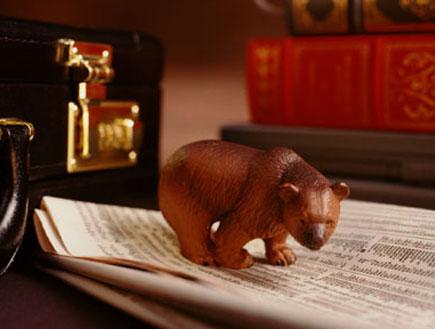 דב על נייר עיתון של מניות (צילום: Stockbyte, GettyImages IL)