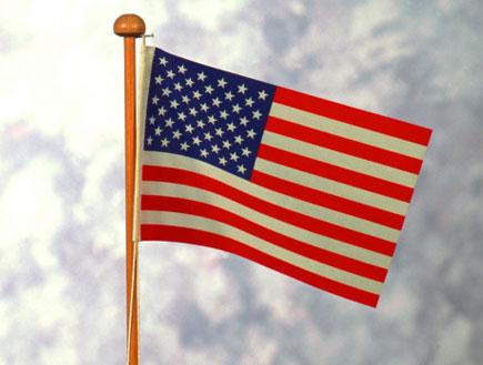 """דגל ארה""""ב על ערימת מטבעות (צילום: John Foxx, GettyImages IL)"""