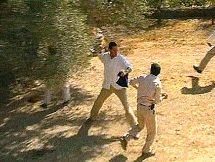 מתנחלים תקפו פלסטינים במהלך מסיק זיתים בחברון