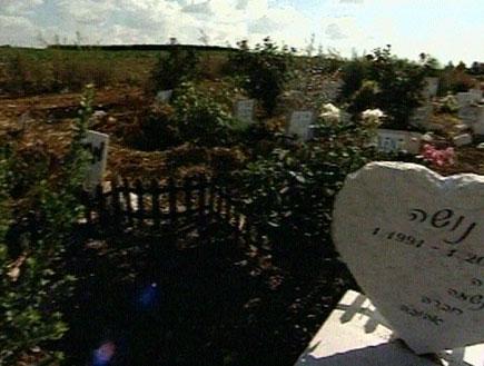 בית קברות לחיות (תמונת AVI: חדשות)