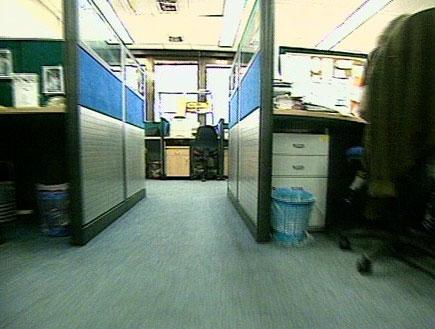 פיטורים במשק: איפה הכי כדאי לעבוד (תמונת AVI: חדשות)