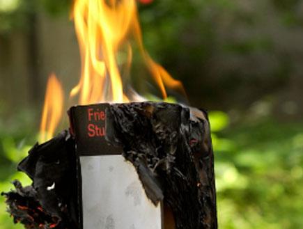 ספר נשרף (צילום: alain naef, Istock)