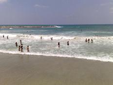 טיולים במישור החוף: ניצנים (צילום: גלעד שלמור)