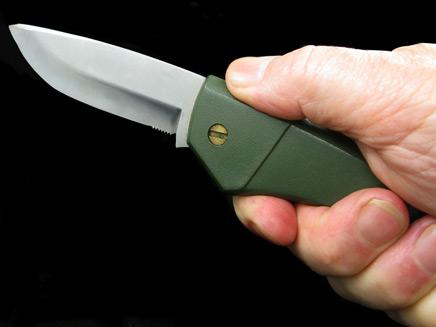 סכין  (צילום: Roberto Romanin, Shutterstock)