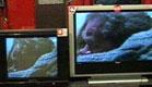 הטלוויזיה היא חיינו  (תמונת AVI: מה קורה)