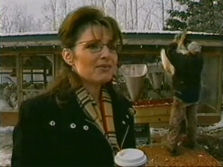 שרה פיילין ממשיכה להביך (צילום: חדשות)