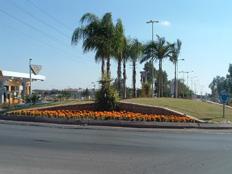 קריית גת, ארכיון (צילום: עיריית קריית גת)
