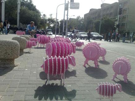 תל אביב קיבלה קצת צבע (צילום: חדשות)