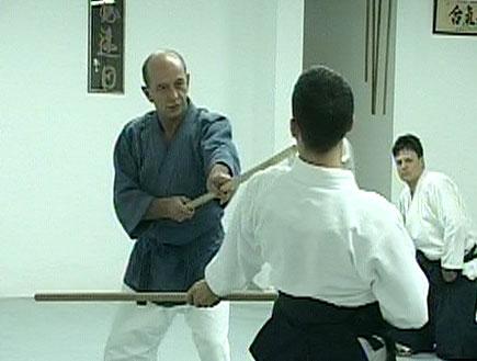 נבי וורל סנסאי נלחם (וידאו WMV: mako)