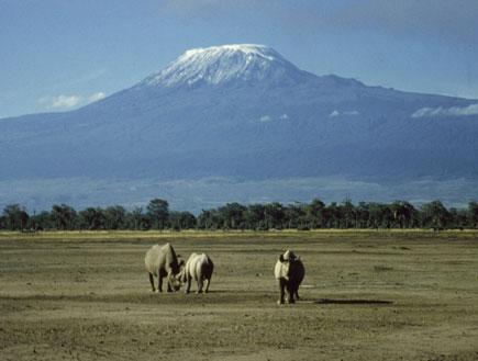 הר הקילימנג'רו (צילום: Getty Images, GettyImages IL)