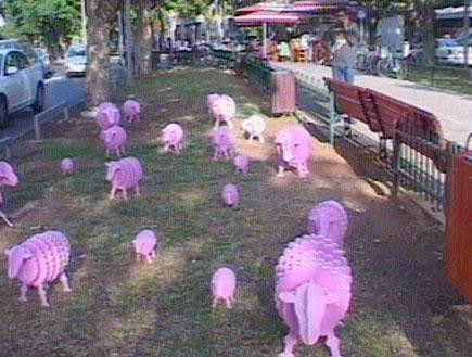 הכבשים שהטריפו את תל אביב