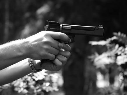 חמוש בוורג'יניה - הדמיה (צילום: אילוסטרציה)