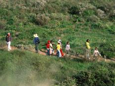 פארק השלולית בנתניה (צילום: באדיבות ארכיון לשכת הדובר עיריית נתניה)