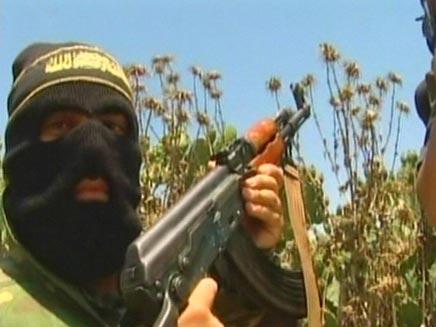 פעילי אל קעידה בדרכם לסוריה (צילום: סי אנ אנ)