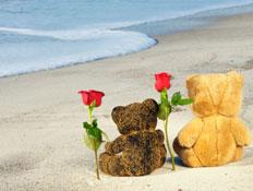 זוג דובים על חוף הים