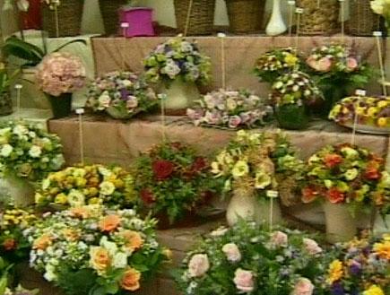 זהירות! פרחים (תמונת AVI: חדשות)