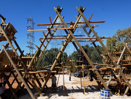 טיולי משפחות: יער ראש ציפור (צילום: קרן קיימת לישראל)